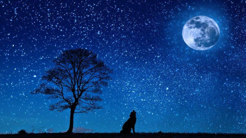 Hold jeles eseményei